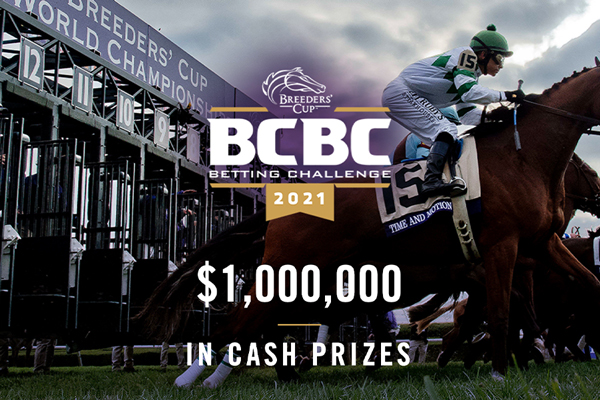Photo for Breeders' Cup Betting Challenge