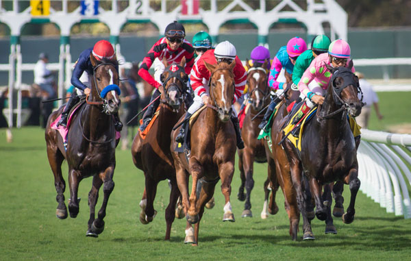 Del Mar Cancels Thanksgiving Card Due to Inclement Weather; Racing Set for Friday and a Stakes-Packed Weekend