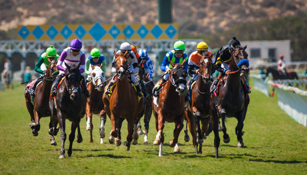 41 Stakes Worth $7.3 Million on Del Mar's 2017 Summer Schedule