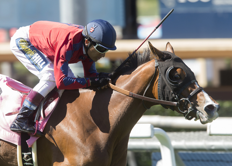 14 Older Fillies and Mares Tangle Thursday in Red Carpet 'Cap