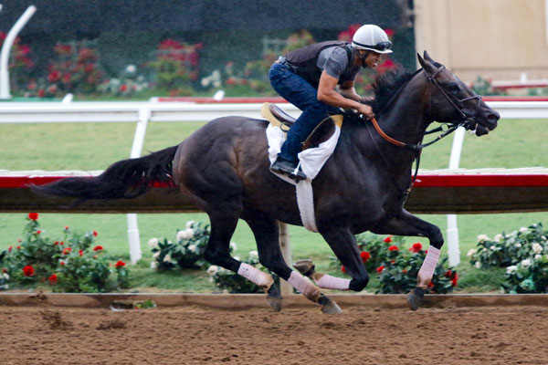 Del Mar Mile Attracts All-Star Line-Up