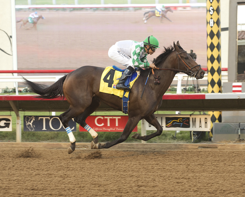 Unbeaten Sircat Sally Tops Field of 8 in San Clemente Handicap