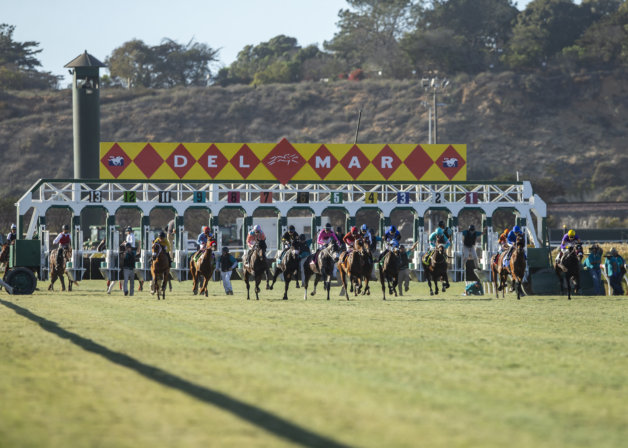 Starting Gate | Benoit Photo