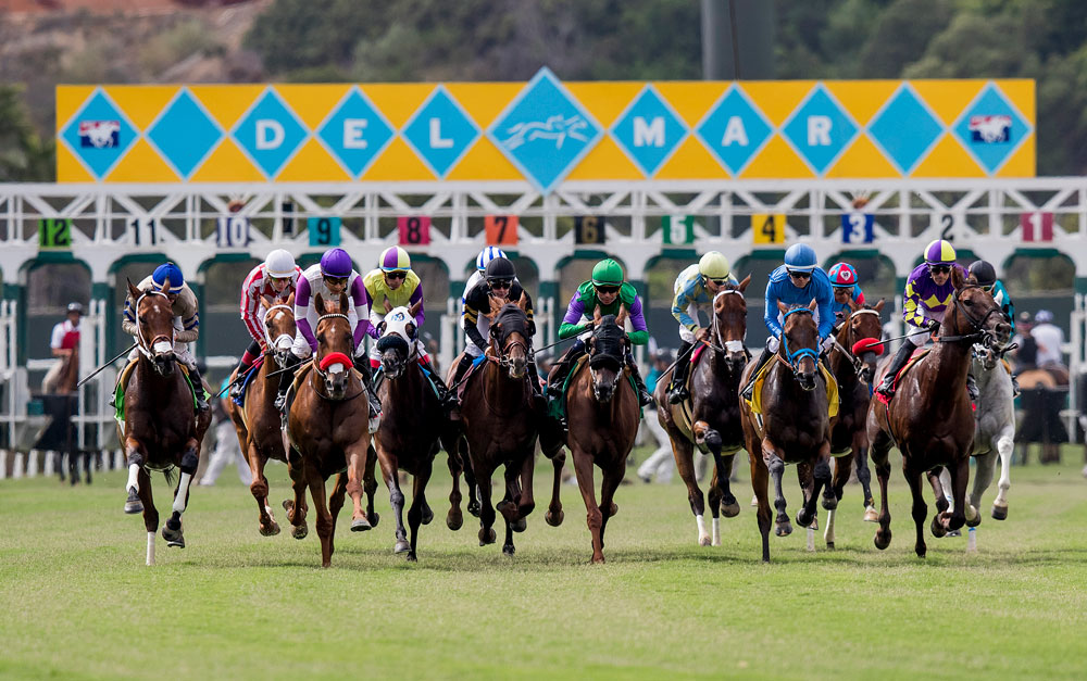First Del Mar Condition Book Out; All Purse Levels Increase