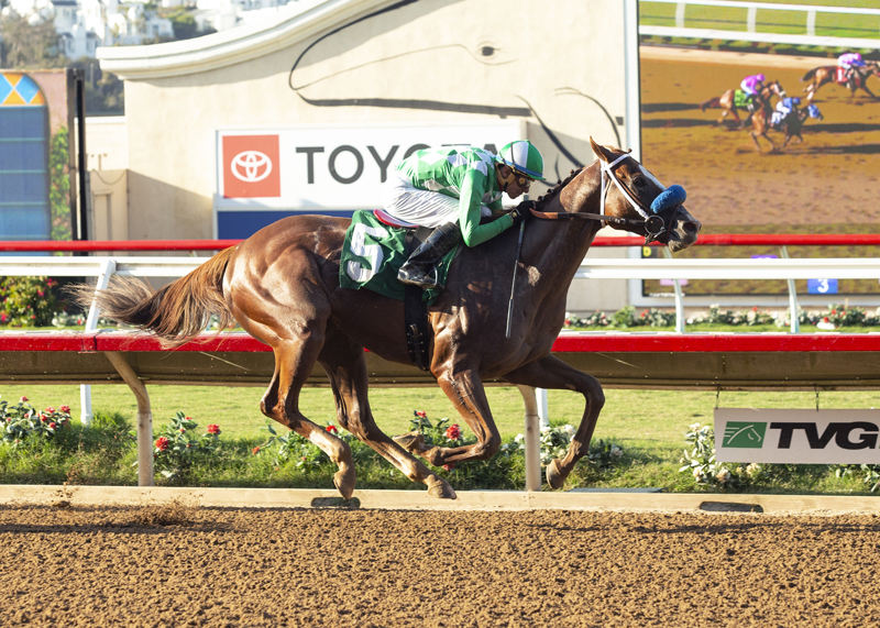 Fashionably Fast Favored in Cary Grant Stakes Sunday