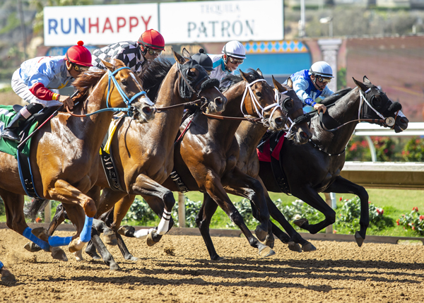 Del Mar Ups Purses 10% Following Strong Opening Session