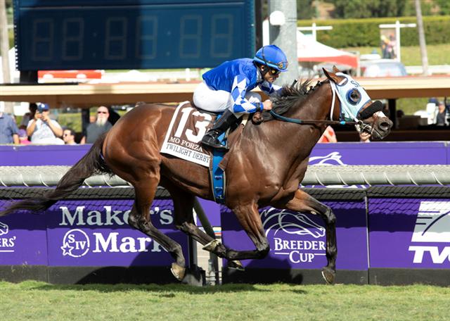 Grade I Hollywood Derby Headlines Stakes Bonanza at Del Mar