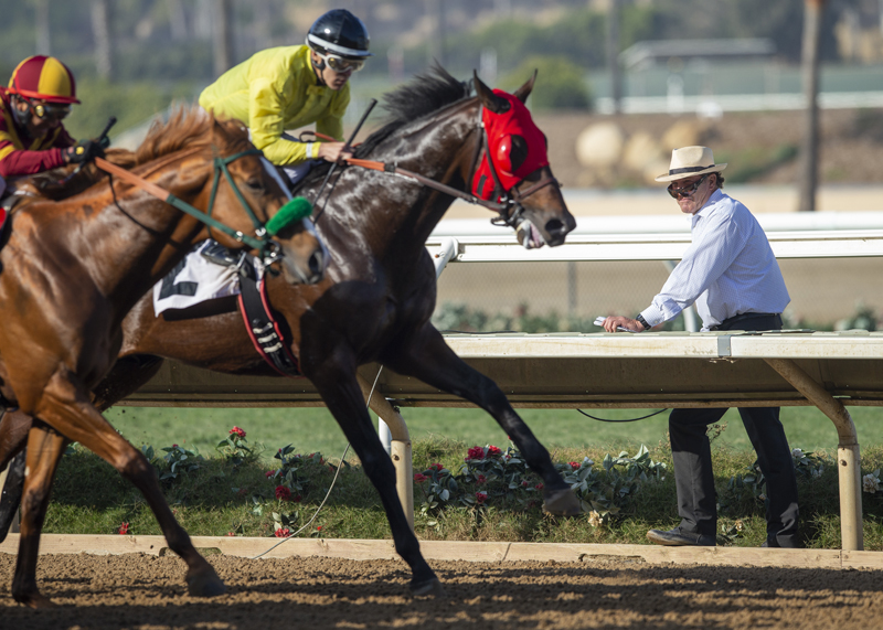 Del Mar Is One Gnarly Place To Work for Surfin' Starter Slender