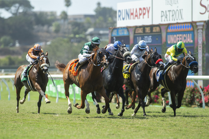 Del Mar Turf Stretch | Benoit Photo