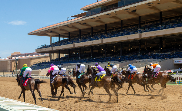 Del Mar Racetrack - Horses Break from the gate