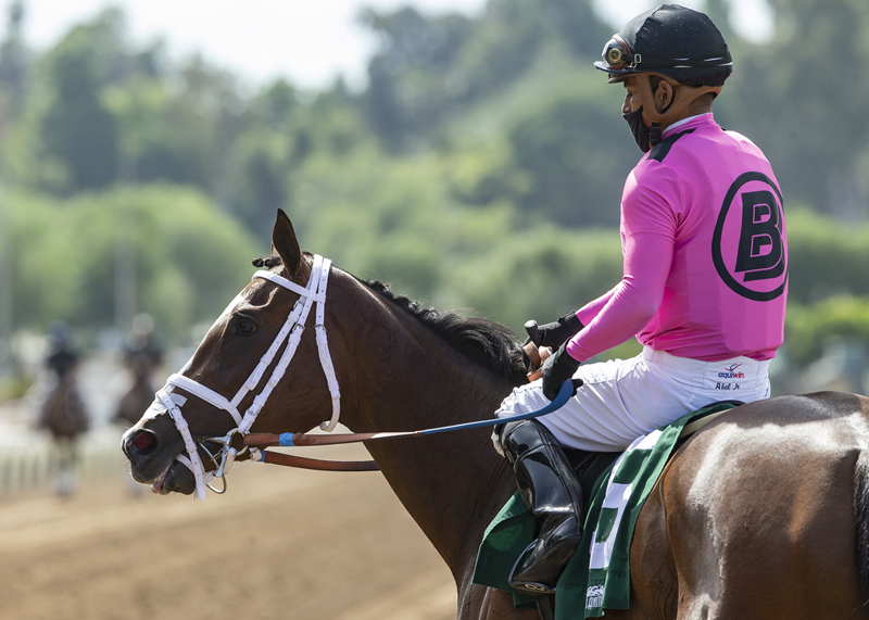 Saturday's San Clemente Stakes Lures 11 Soph Fillies at Del Mar
