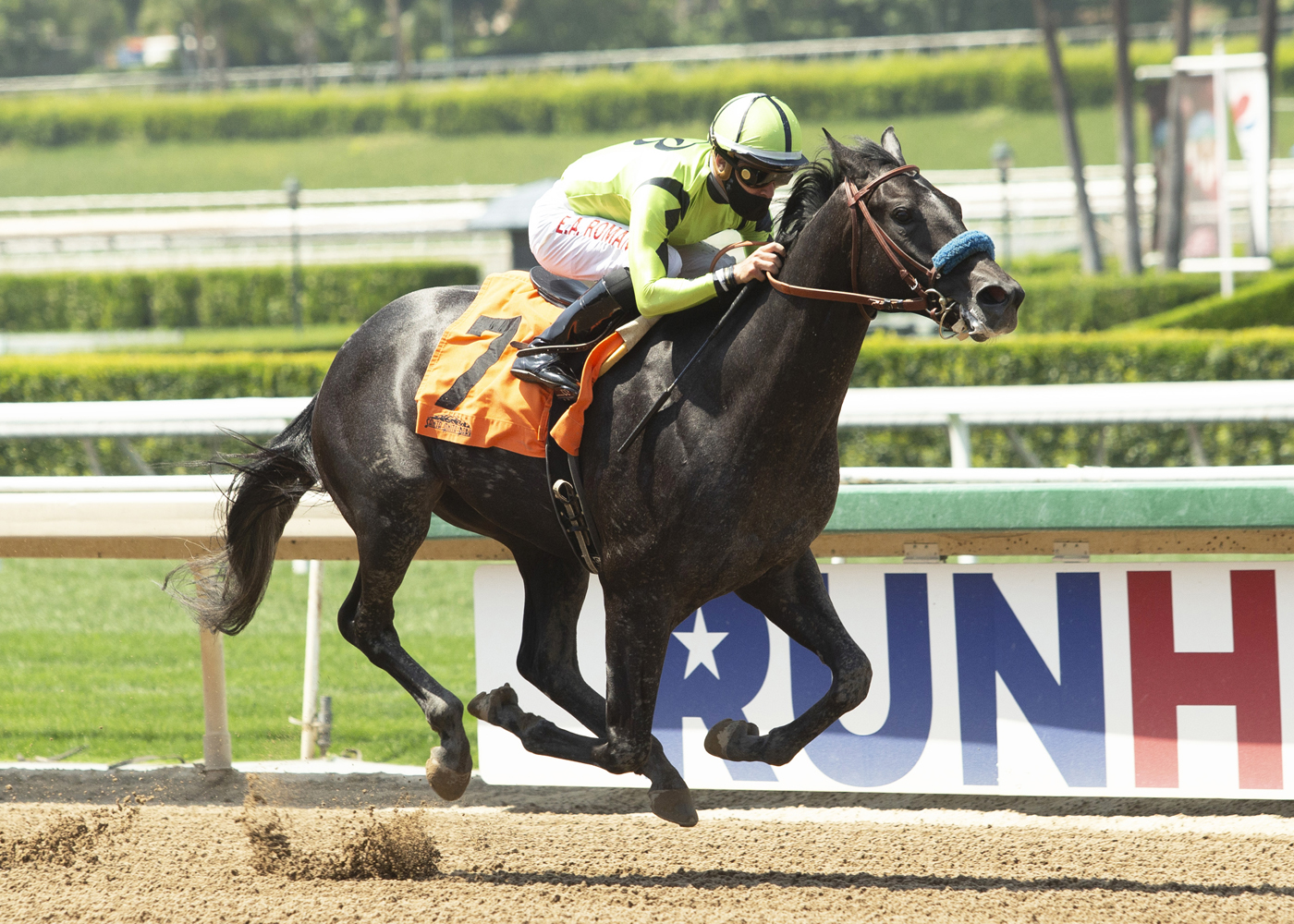 Sunday's Graduation Draws 7 Juveniles for their Stakes Debut