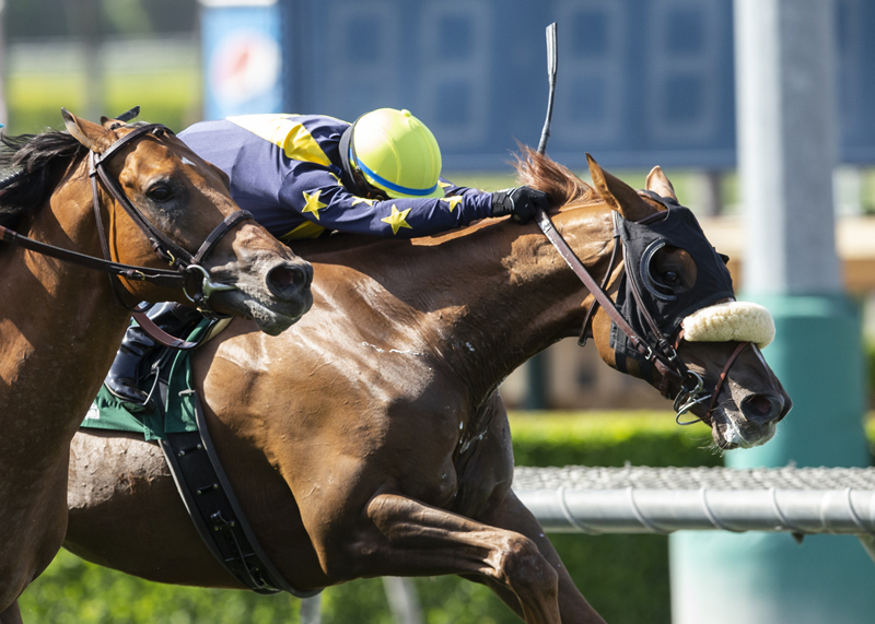 United The One to Beat Sunday in Eddie Read Stakes at Del Mar