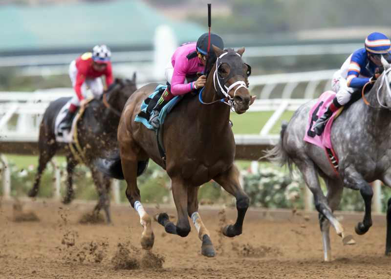 Solid Wager Seeks Third Straight Victory in Cary Grant Stakes Sunday