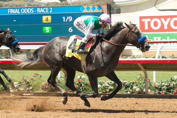Arrogate Assigned 126 Pounds for TVG San Diego 'Cap Saturday