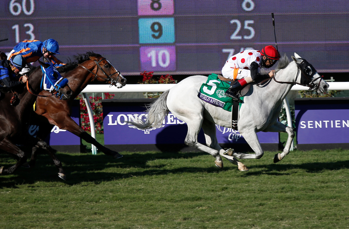Favored World Approval Wins Breeders' Cup Mile