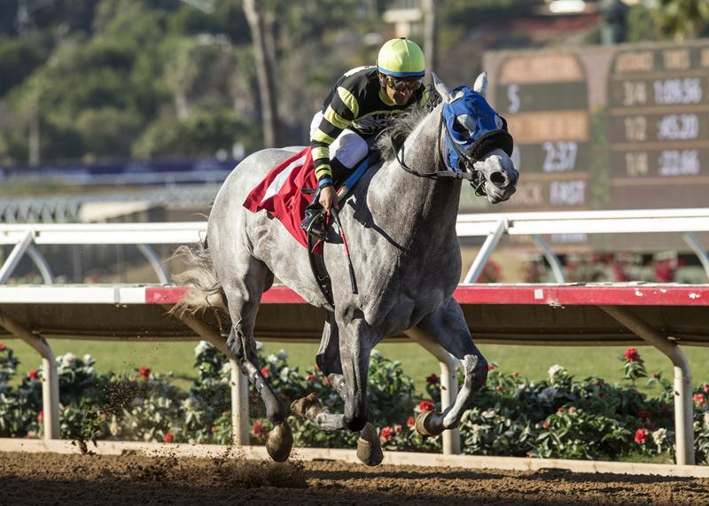Greyvitos Upsets in Bob Hope Stakes