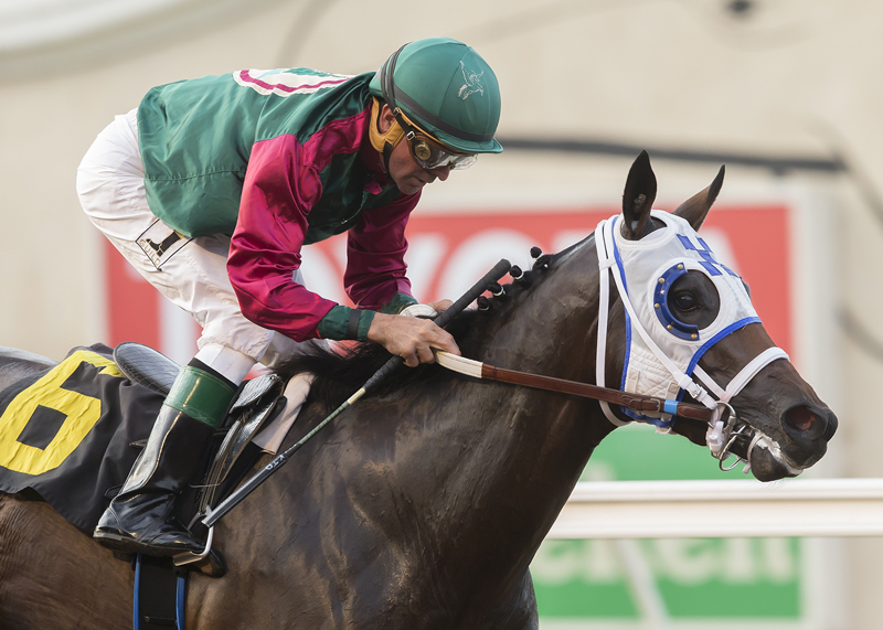 Bookies Luck Surprises in I'm Smokin Stakes