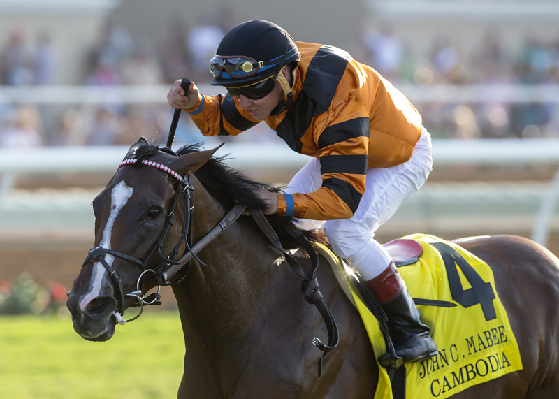 Cambodia Triumphs in John C. Mabee Stakes