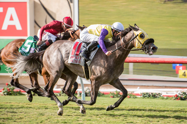 Hunt Wins Marathon Del Mar Handicap