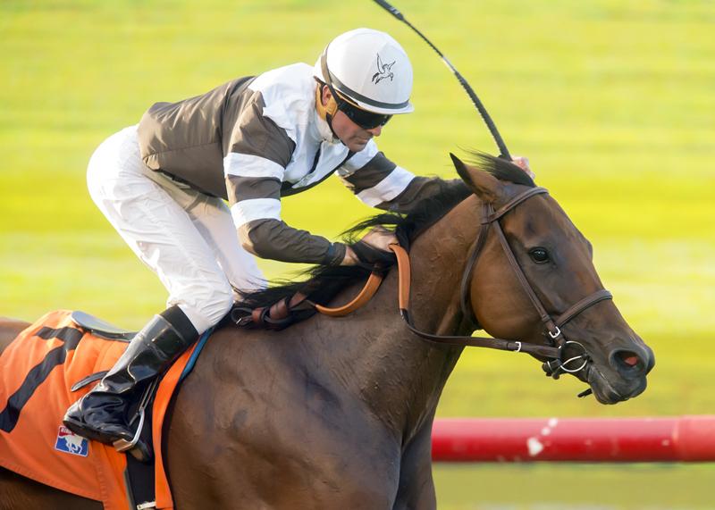 Madame Stripes, Desormeaux win Osunitas Stakes