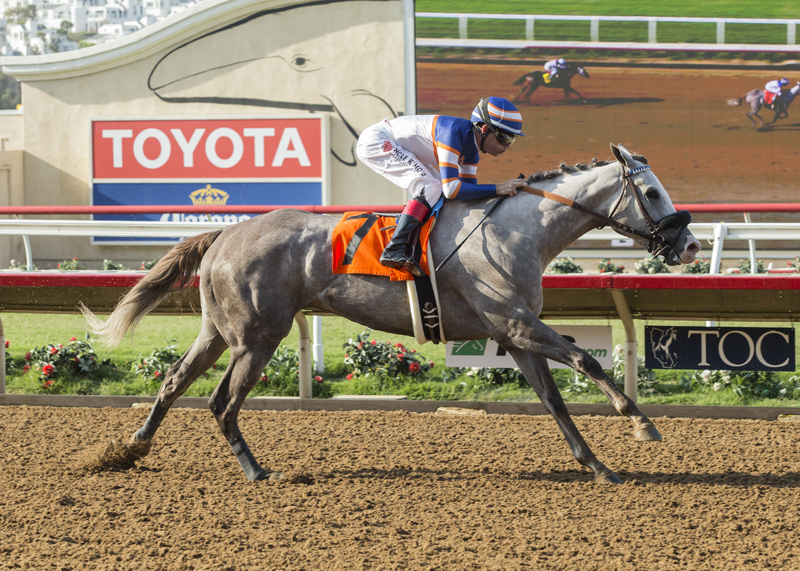 Just Grazed Me Faces Ten In Torrey Pines Stakes