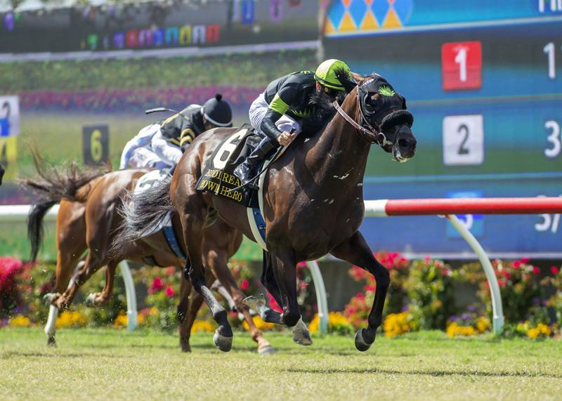 Bowies Hero, Prat Triumph in Eddie Read Stakes