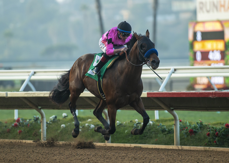 High Velocity Wins Bob Hope Stakes