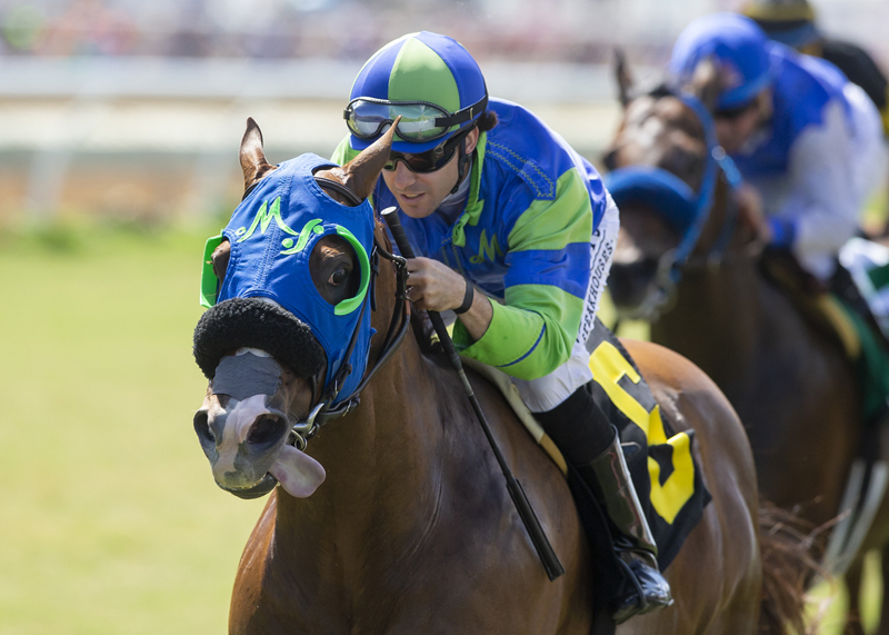 Green Flash Handicap (Grade III)