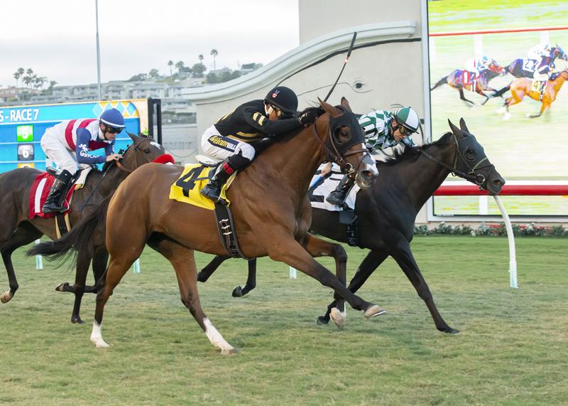 Siberian Iris, Bejarano Win CTT & TOC Stakes
