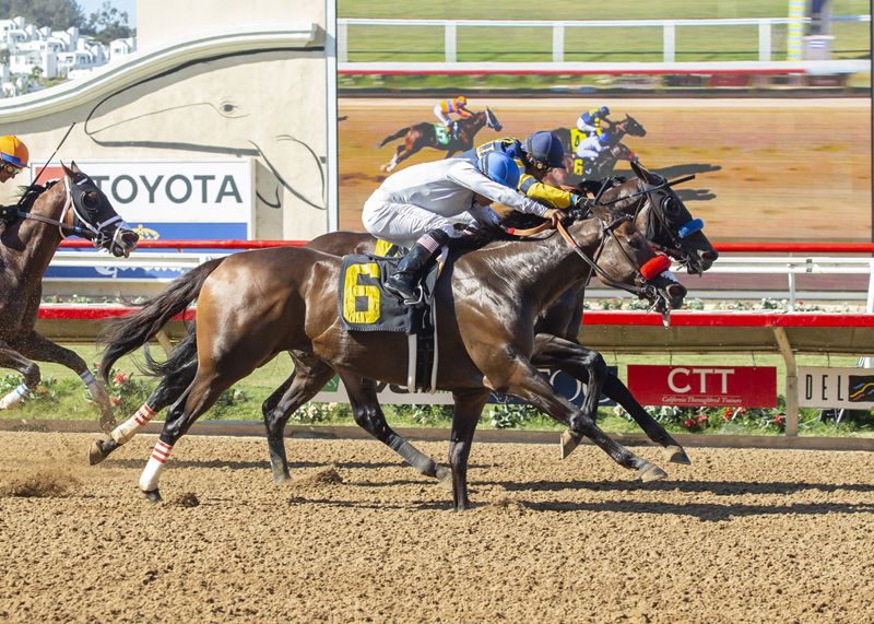 Two Thirty Five Scores in Brubaker Stakes