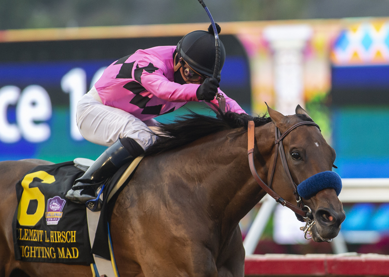 Fighting Mad Outruns Them in Grade I Hirsch at Del Mar