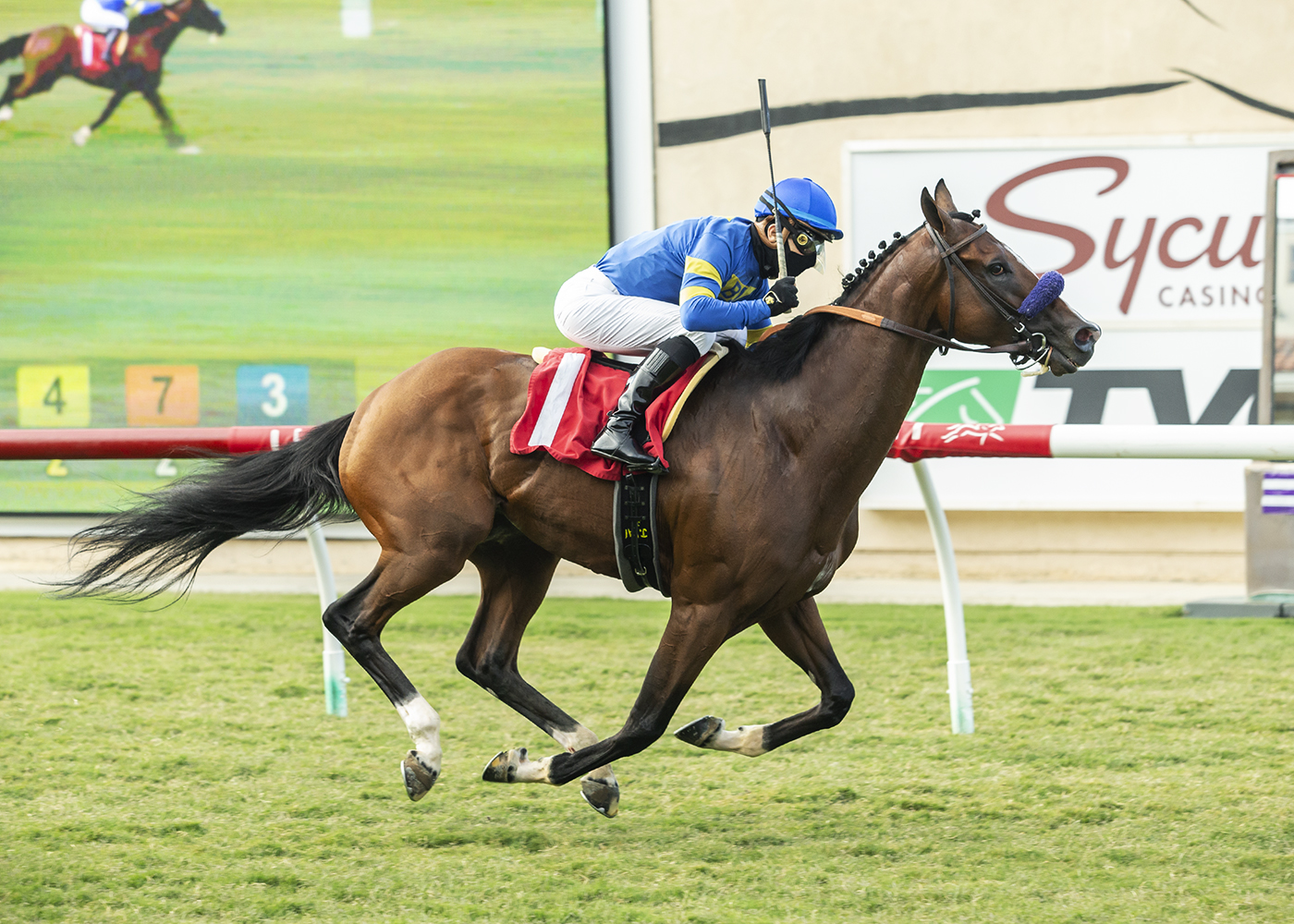 Order and Law Wire to Wire to Tally at Del Mar Monday