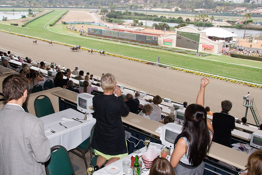 View from the Turf Club Tables