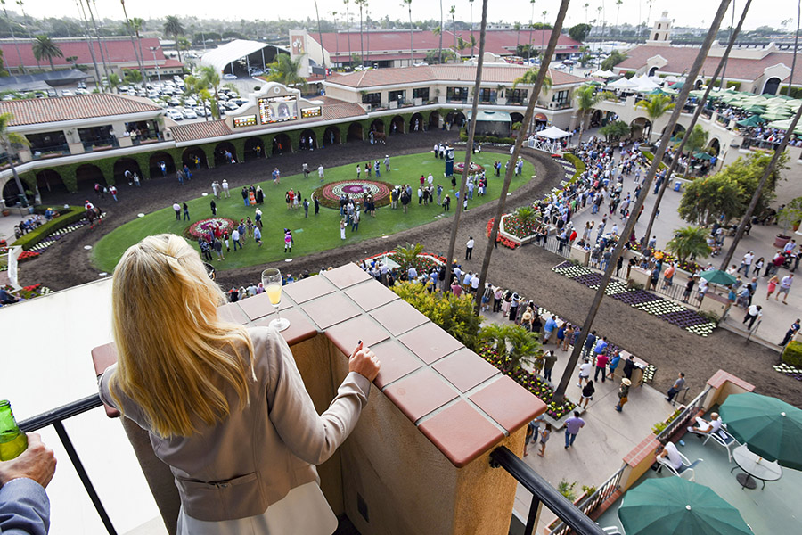 View of the Paddock from the Turf Club