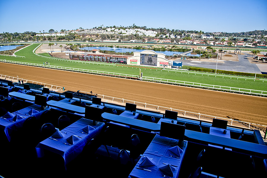 View of the Track from the Turf Club