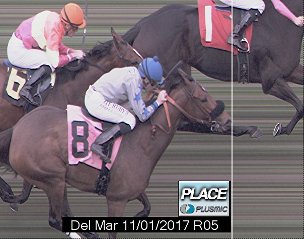 Photo finish for Nov 1, 2017 5, 2nd place