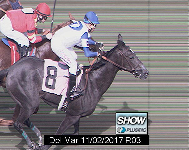Photo finish for Nov 2, 2017 3, 3rd place