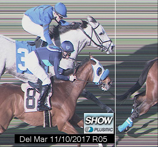 Photo finish for Nov 10, 2017 5, 3rd place