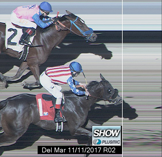 Photo finish for Nov 11, 2017 2, 3rd place