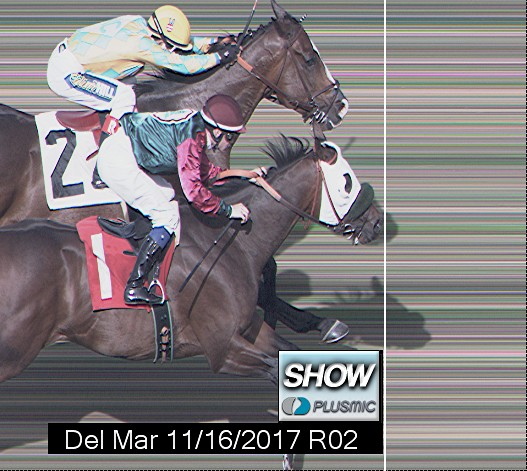 Photo finish for Nov 16, 2017 2, 3rd place