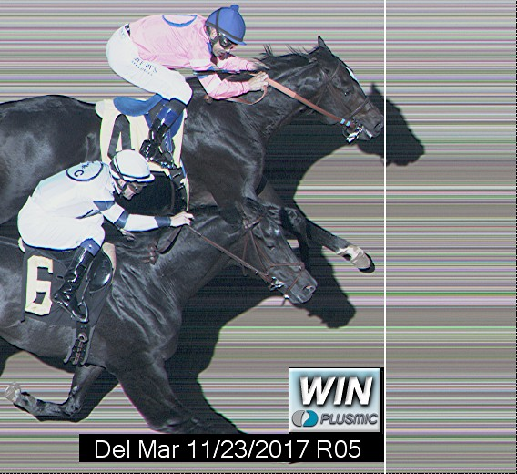 Photo finish for Nov 23, 2017 5, 1st place