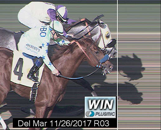Photo finish for Nov 26, 2017 3, 1st place