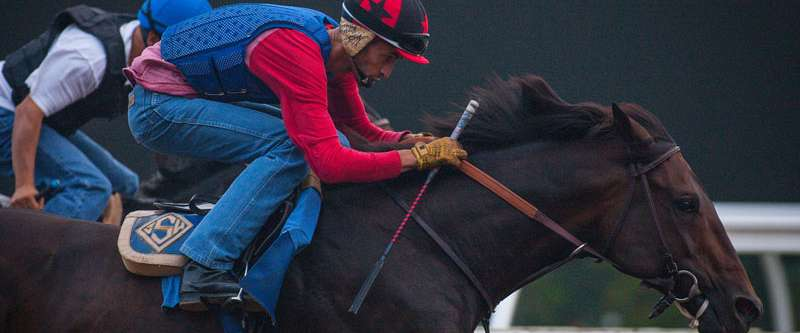 Photo of Hard Aces, Hardly Heralded, Has High Hopes in Pacific Classic