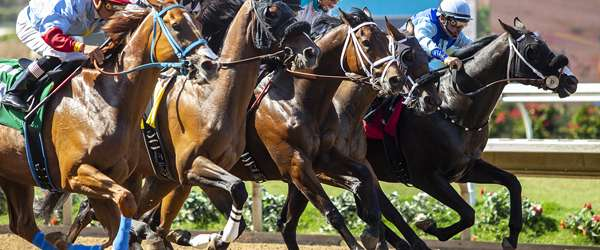 Photo of Del Mar Again Focuses on Safety as Summer Meet Set To Start; Welfare of Both Humans and Horses Top Priority