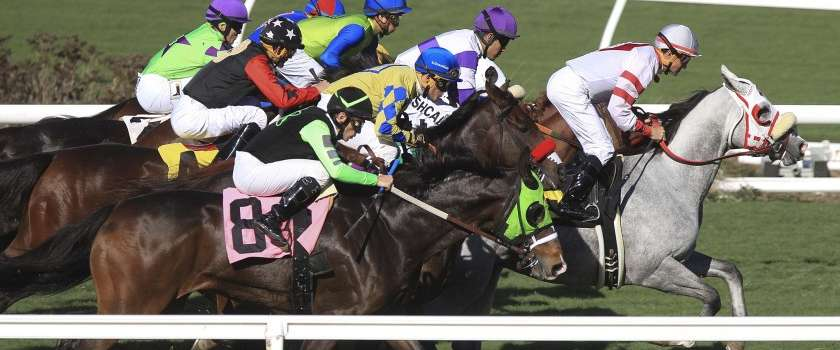 Photo of Commentary: How Del Mar is improving safety for racehorses