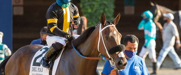 Photo of Trio of Fillies Take On The Boys in Del Mar Derby