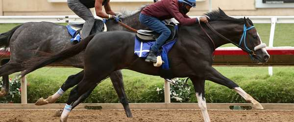 Photo of Derby Prep at Del Mar Saturday: Shared Belief Draws Six Sophs
