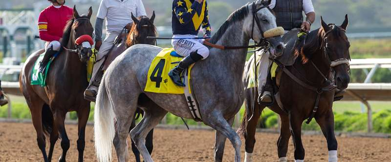 Photo of Long-Winded Distaffers Meet in Saturday's CTT & TOC at Del Mar