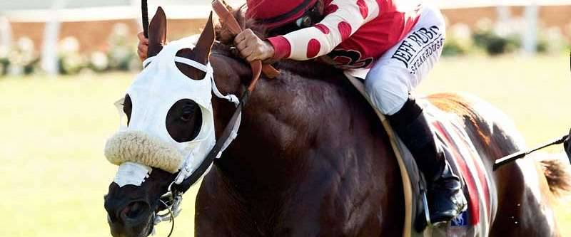 Photo of Soul Driver, Smith Win Oceanside Stakes